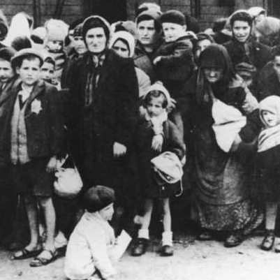 holocaust photo essay assignment Holocaust literary and research unit la1053 write a three-part essay using specified documentation literary assignment – draw for topics.