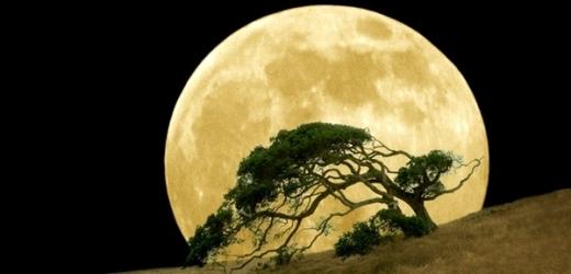 Měsíc bude na obloze největší a nejjasnější za posledních osmnáct let.