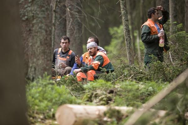 Dřevorubci začínají být nervózní z chování aktivistů, které jim ztěžuje práci.