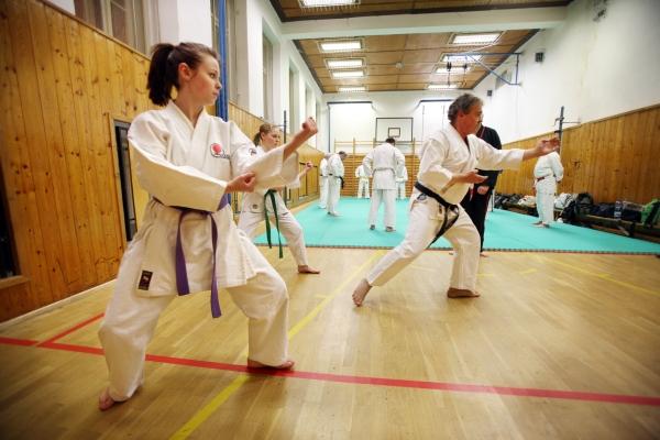 Dávky lze získat například na kurzy bojového umění.