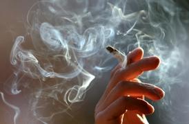 mobilní kouření filmy