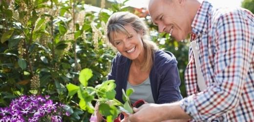 Zahrádkáři by mohli pěstovat pouze z registrovaných semen (ilustrační foto).