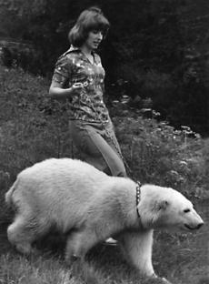 S mládětem medvěda ledního. Z historie brněnské zoo.
