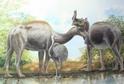 Macrauchenia vypadala jako velbloud bez hrbu, zato s chobotem.