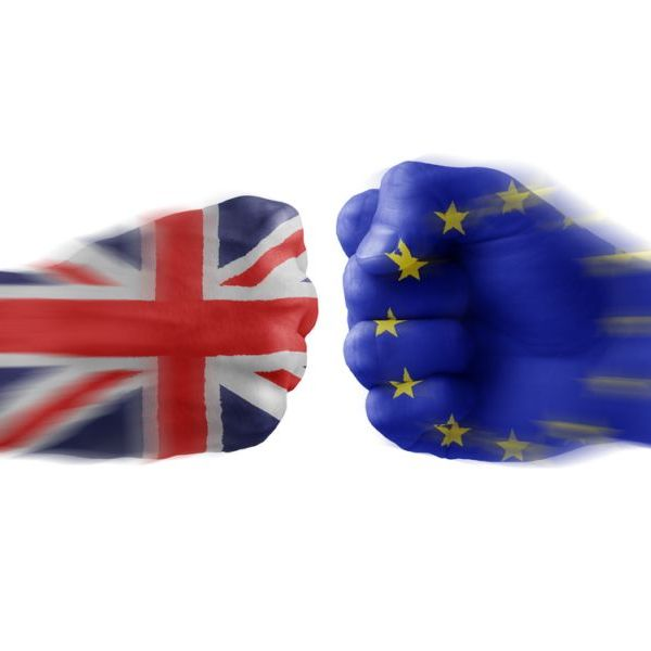 analysis the impact of two policies of the european union on uk business organization It is useful to consider that environmental policy comprises two in the european union  environmental policies suitable for their organization.