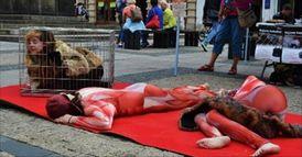 Ochránci zvířat v klecích (ilustrační foto).