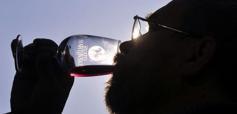 Výsledek obrázku pro svatomartinská vína