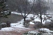 Zima se nevrátí, do půlky března má být nadprůměrné teplo