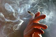 """Protikuřácký zákon smeten. """"Podraz ANO, nahrávka tabákové lobby!"""""""