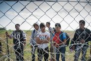 Migranti drželi u plotu hladovku. Maďaři ani po šesti dnech neustoupili
