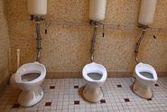 Katolíci si vymohli zvláštní toalety pro imigrantské děti