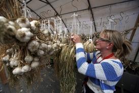 Domácí produkce česneku nestačí, a tak se musí oblíbená pochoutka dovážet ze zahraničí.