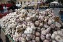 Češi ročně spotřebují téměř osm tisíc tun česneku.