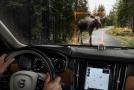 V bezpečnostní výbavě nechybí technologie varující před srážkou s větším zvířetem.
