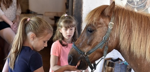 Děti z jezdeckého a chovatelského kroužku.