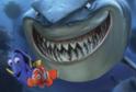 Oblíbený animovaný film Hledá se Nemo.