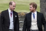 Princové William a Harry přiznali: Matku jsme odbyli