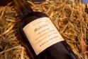 Víno Madeira (ilustrační foto).