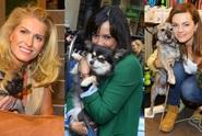 Podívejte se na mazlíčky českých hvězd. Kdo svého psa nejvíc rozmazluje?