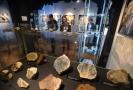 V muzeu je k vidění takřka 1500 exponátů.