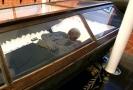 V Praze budou k vidění mumie z celého světa.