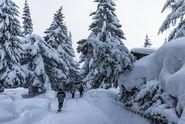 Napadne až 10 centimetrů sněhu, hrozí kalamita, varuje předpověď