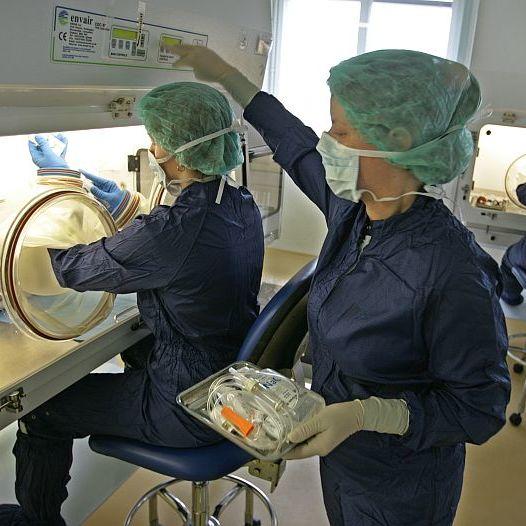 Náklady na léčbu papilomů