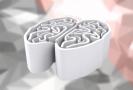Nový robotický přístroj detailně zobrazuje strukturu mozku (ilustrační foto).