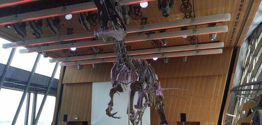 Kostra dinosaura se na Eiffelovce vydražila za dva miliony eur
