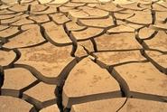 Letošní sucho? Není tak zlé jako loni