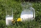 Mléko (ilustrační foto).