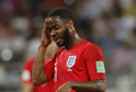 Hmyz obtěžoval hráče během zápasu Anglie s Tuniskem.