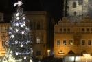 Vánoční smrk na Staroměstském náměstí v Praze.