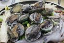 Mořské plody mohou být zrádné (ilustrační foto).