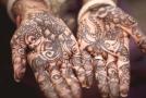 Henna se používá ke zdobení těla nebo barvení vlasů.