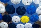 Deštníky se budou v září dražit, výtěžek půjde na charitu.