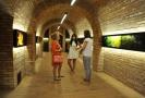 Historické sklepení nabízí veřejnosti prohlídky a skladuje tam archivní vína.