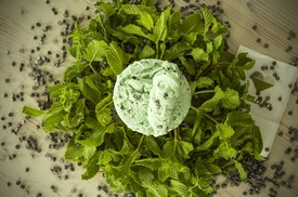 Hitem aktuálního léta jsou rovněž zmrzliny připravené z bylinek. Třeba máty.