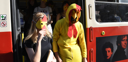 The queen activists brought the life of the chickens into cages.