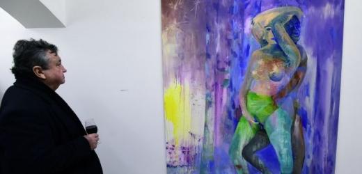 Výstava Akt 2016, dílo Martina Mainera.