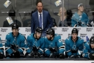 Českým hokejistům se v přípravě NHL daří.