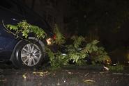 Silná bouře zasáhla Česko. Stromy létaly přes silnici