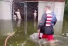 Muž zachránil šest psů uvězněných v zatopené kleci.