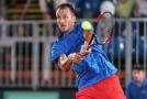 Čeští tenisté se utkají s Nizozemskem.