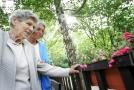 Mnoho starších lidí trápí zejména nevyléčitelná Alzheimerova choroba.