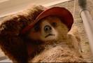 Snímek z filmu Paddington 2.