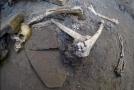 Nalezené lidské ostatky.