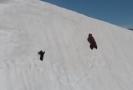 Medvídě se na sněhu drápalo za matkou.