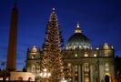 Vánoční strom na Svatopetrském náměstí ve Vatikánu.