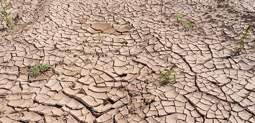 Sucho a vysoké teploty nás budou trápit čím dál častěji.